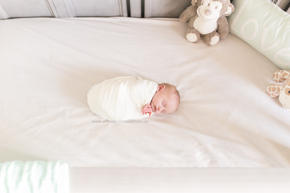 Woodstock Newborn Photo baby in crib