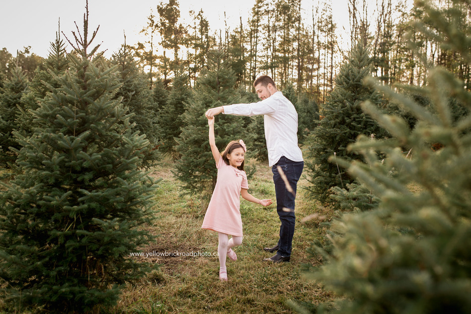 Family Photographer in Guelph Tree Farm Session
